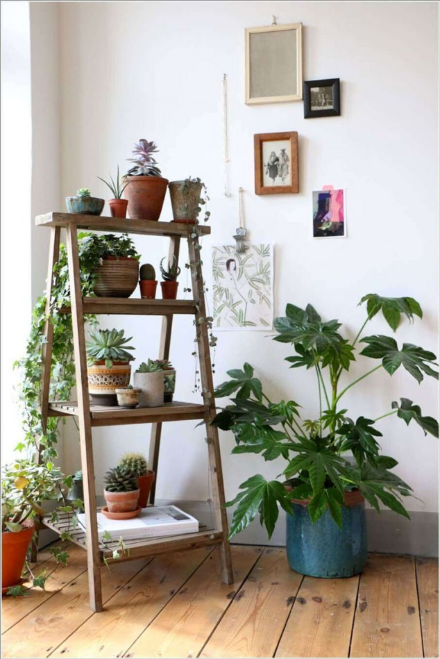 AD Amazing Ideas For Indoor Plants 05 634x949 12 Creative Ideas How To Display Your Indoor Plants
